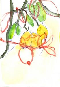 Im Land wo die Zitronen blühn...2 Birgit Herzberg-Jochum